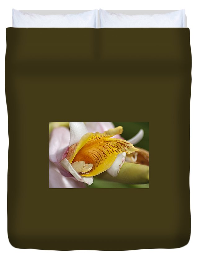 Orchid Duvet Cover featuring the photograph Orchid by Carolyn Marshall