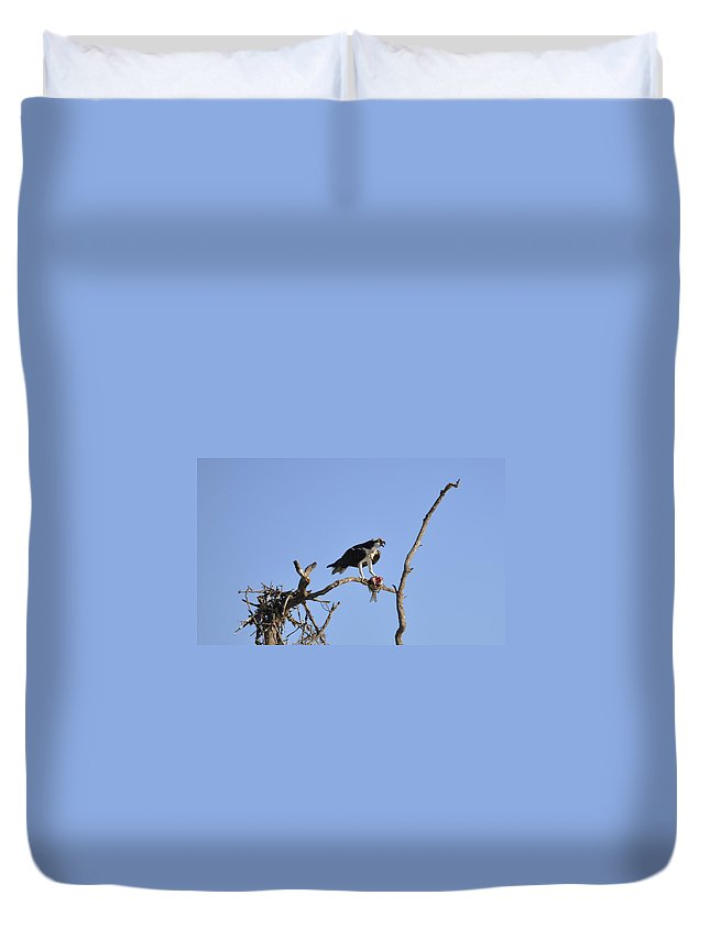 Osprey Duvet Cover featuring the photograph Osprey with Catch I by Christine Stonebridge