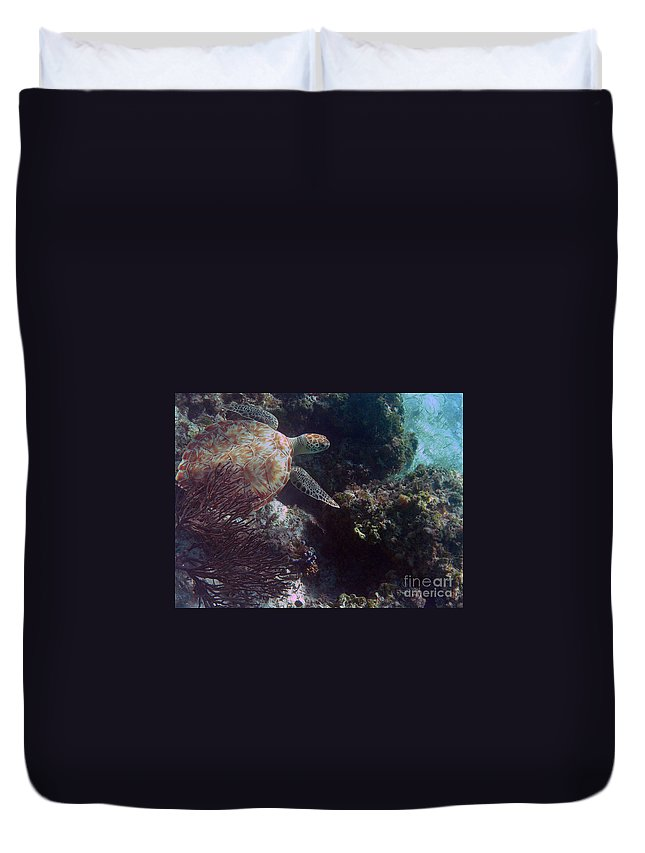 Turtle Duvet Cover featuring the photograph Out Of The Darkness by Li Newton
