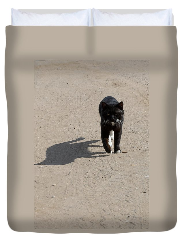 Cat Duvet Cover featuring the photograph Owner by Michael Goyberg