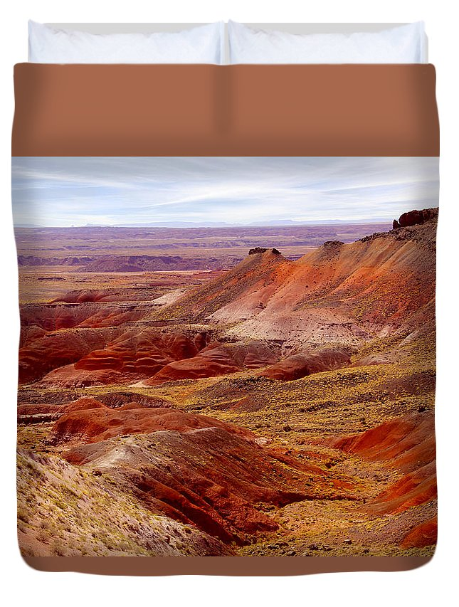Painted Desert Duvet Cover featuring the photograph Painted Desert by Mike McGlothlen