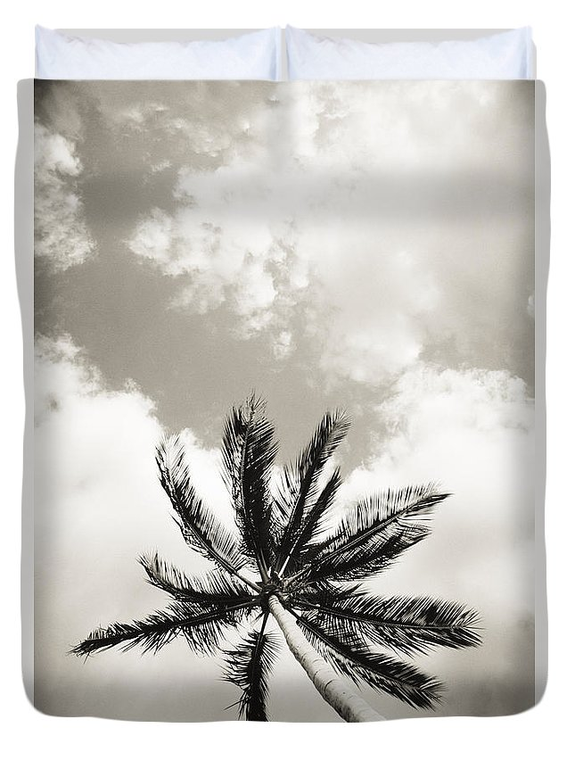 Art Medium Duvet Cover featuring the photograph Palm And Sky by Carl Shaneff - Printscapes