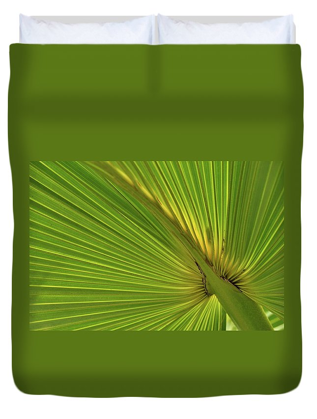 Palm Duvet Cover featuring the photograph Palm Leaf II by JD Grimes