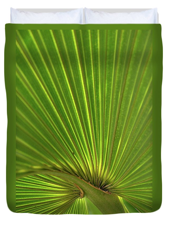 Palm Duvet Cover featuring the photograph Palm Leaf by JD Grimes