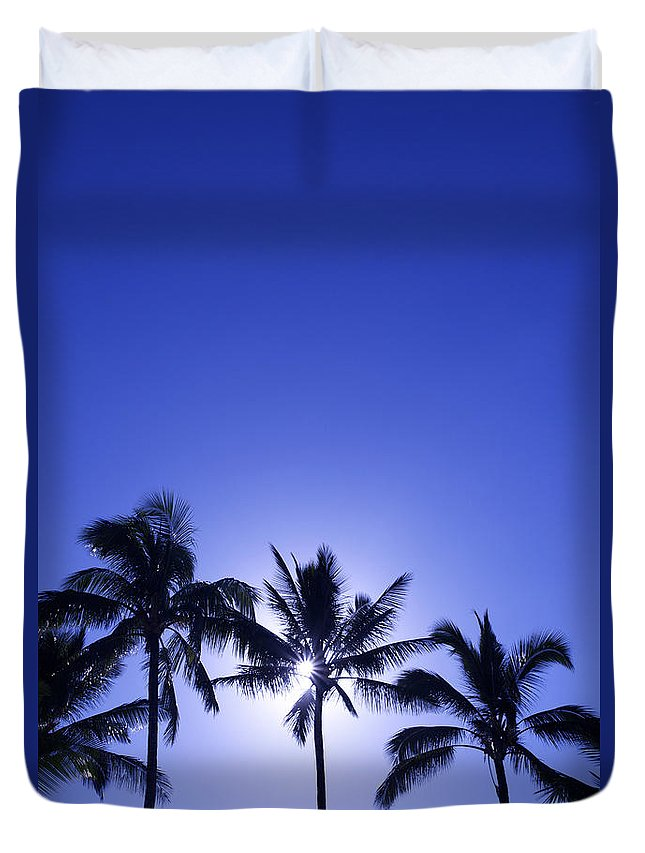 Backlit Duvet Cover featuring the photograph Palm Tree Silhouettes by Kicka Witte - Printscapes