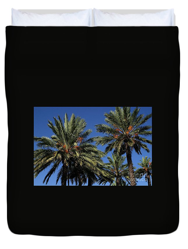 Gary Gingrich Duvet Cover featuring the photograph Palms 9838b by Gary Gingrich Galleries