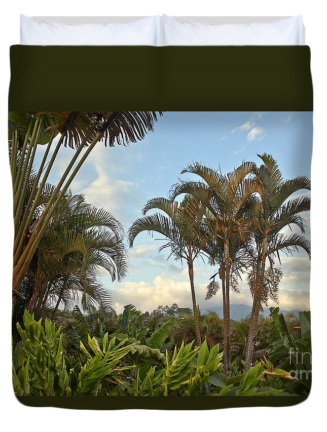 Palm Duvet Cover featuring the photograph Palms In Costa Rica by Madeline Ellis