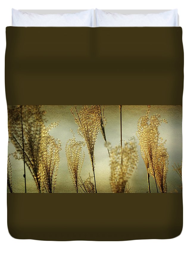 Pampas Grass Duvet Cover featuring the photograph Pampas Grass Panoramic by Amy Tyler