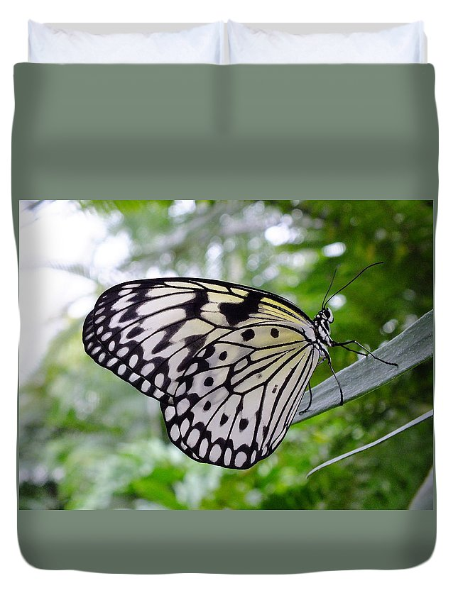 Nature Duvet Cover featuring the photograph Paper White by Peggy King