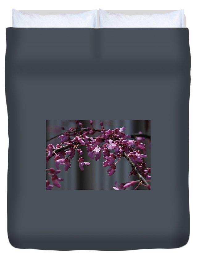 Blossons Duvet Cover featuring the photograph Parking by Joseph Yarbrough