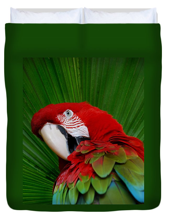 Parrot Duvet Cover featuring the photograph Parrot Head by Skip Willits