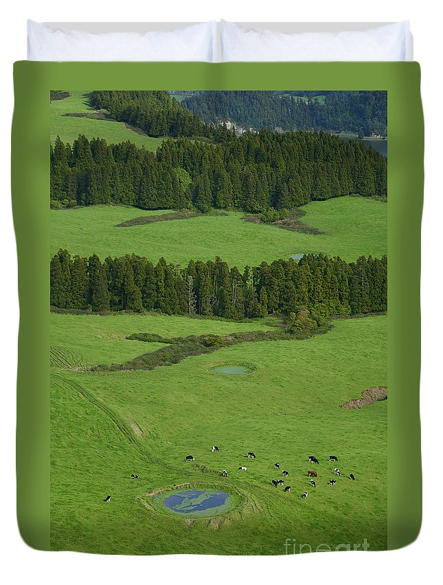 Green Duvet Cover featuring the photograph Pastures In Azores Islands by Gaspar Avila