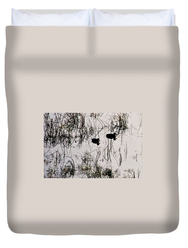 Birds Duvet Cover featuring the photograph Patterns In Reflections by Albert Seger
