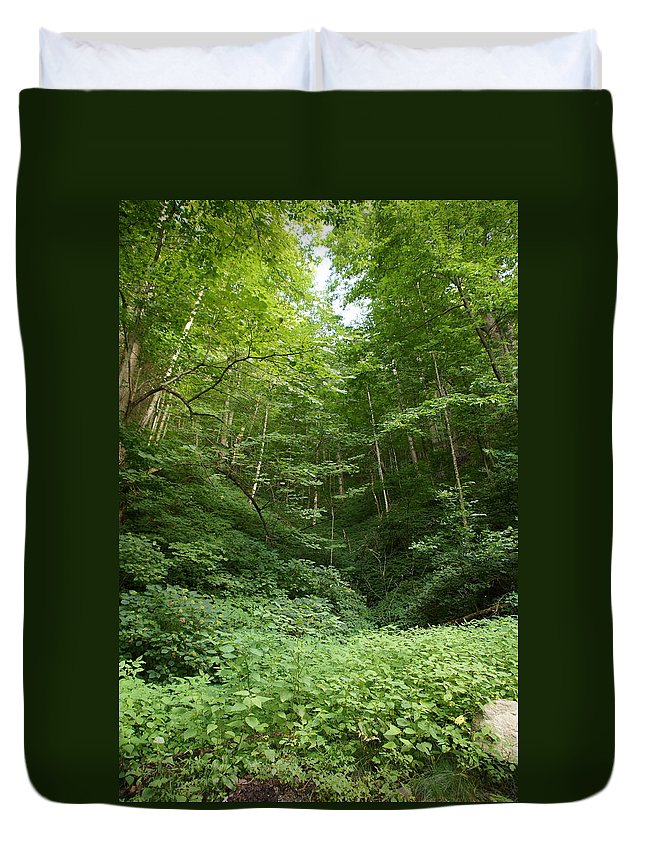 Forest Duvet Cover featuring the photograph Peaceful Forest by Megan Cohen