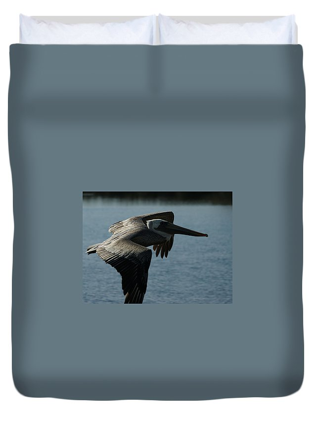 Brown Pelican Duvet Cover featuring the photograph Pelican Fly By by Ernie Echols