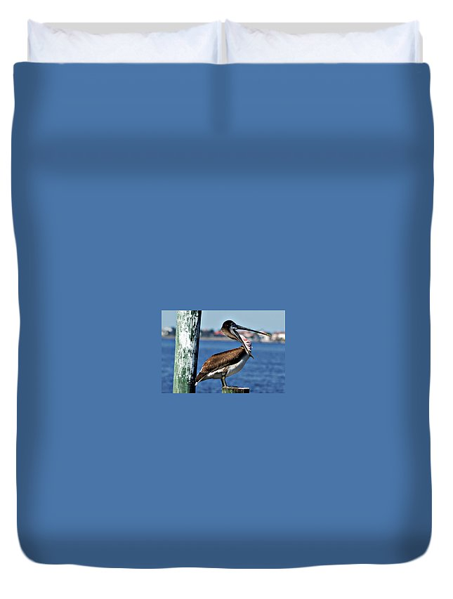 Pelican Duvet Cover featuring the photograph Pelican II by Joe Faherty
