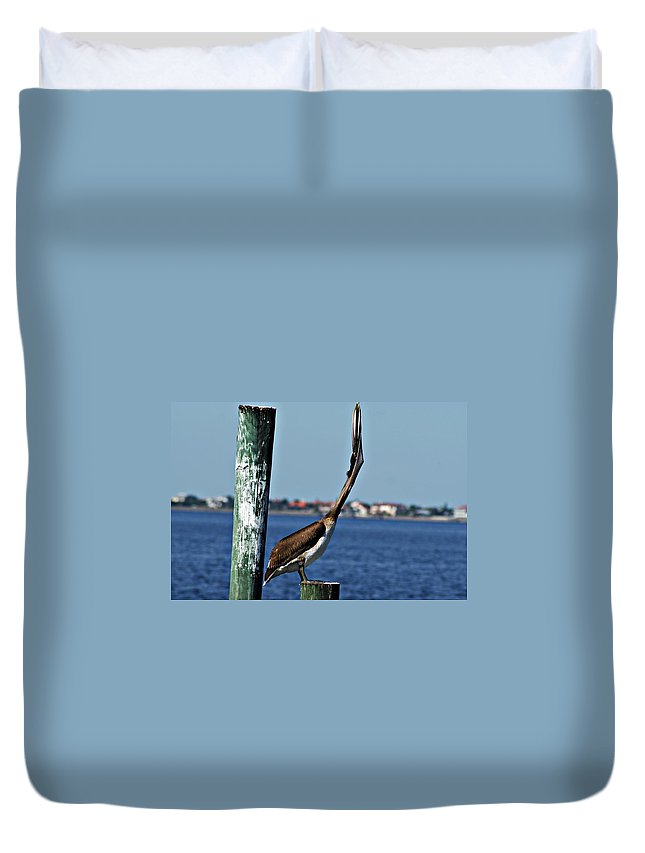 Pelican Duvet Cover featuring the photograph Pelican IIi by Joe Faherty