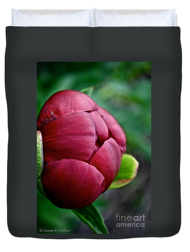 Plant Duvet Cover featuring the photograph Peony Bud by Susan Herber
