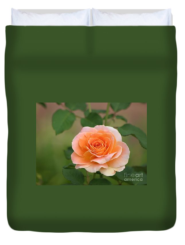 Roses Duvet Cover featuring the photograph Perfect Peach Petals by Living Color Photography Lorraine Lynch