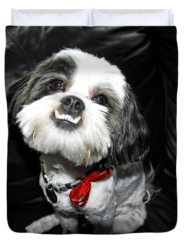 Dog Duvet Cover featuring the photograph Perfect Subject by G Adam Orosco