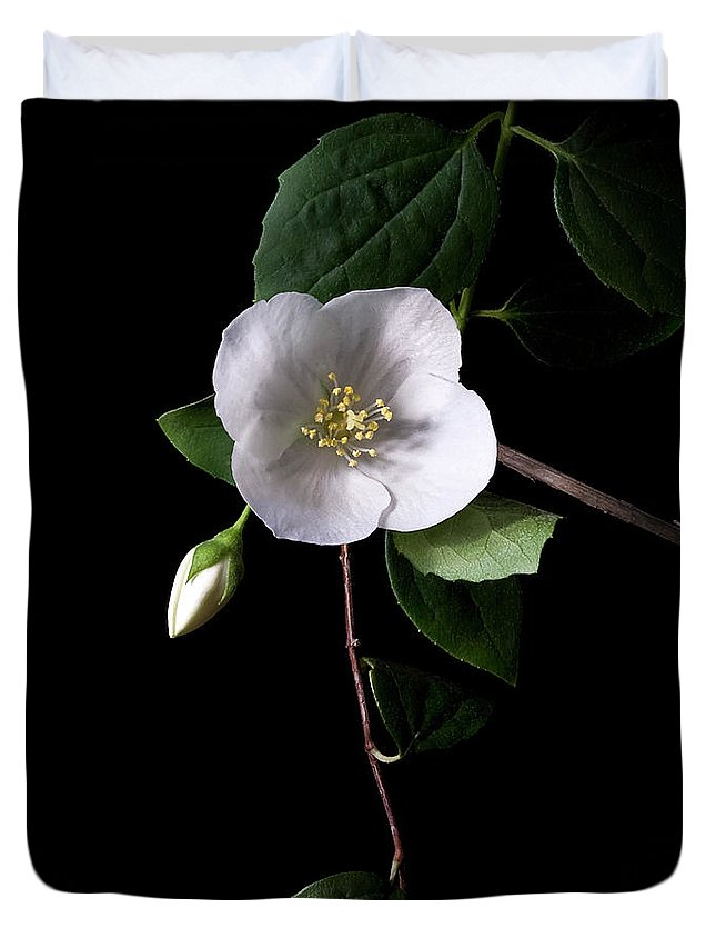Flower Duvet Cover featuring the photograph Philadelphus by Endre Balogh