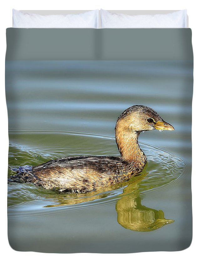 Pied-billed Grebe Duvet Cover featuring the photograph Pied-billed Grebe by Saija Lehtonen
