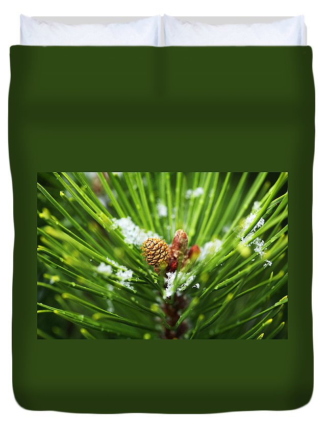 Pine Duvet Cover featuring the photograph Pine Cone Cloeup by Marilyn Hunt