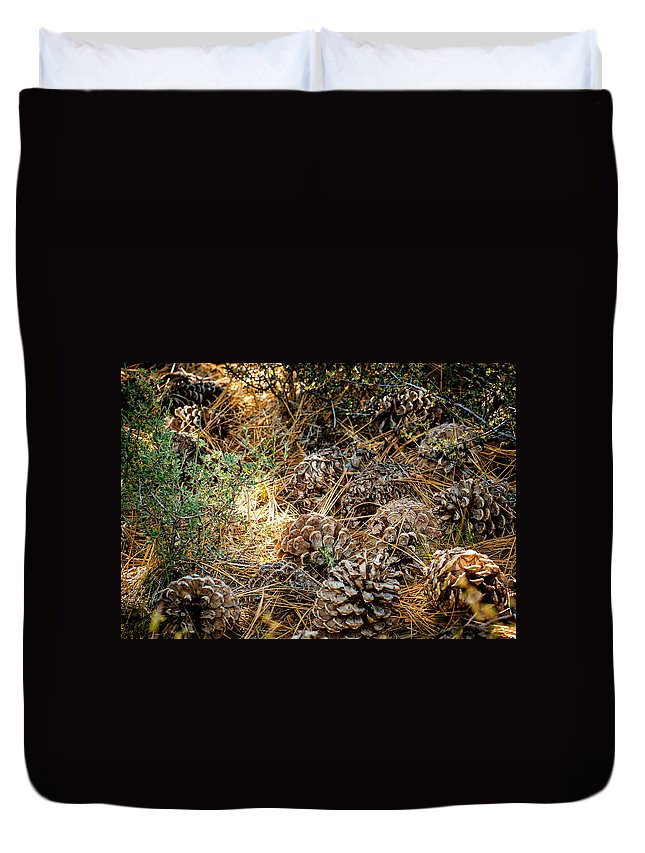 Pine Cones Duvet Cover featuring the photograph Pine Cones by Cathy Smith