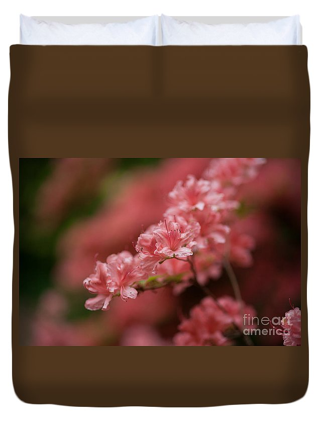 Rhodies Duvet Cover featuring the photograph Pink Blossoms by Mike Reid
