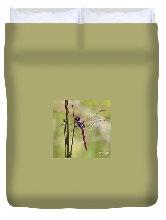 Dragonfly Duvet Cover featuring the photograph Pink Dragonfly With Sparkly Wings by Carol Groenen