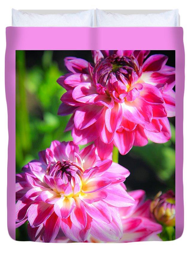Sunflower Duvet Cover featuring the photograph Pink Flower Pair by Steve McKinzie