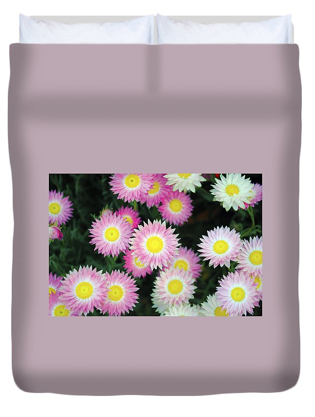 Pink Flower Duvet Cover featuring the photograph Pink Flowers by Sumit Mehndiratta