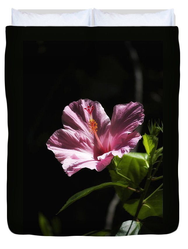 Florals Duvet Cover featuring the photograph Pink Hibiscus by Linda Dunn