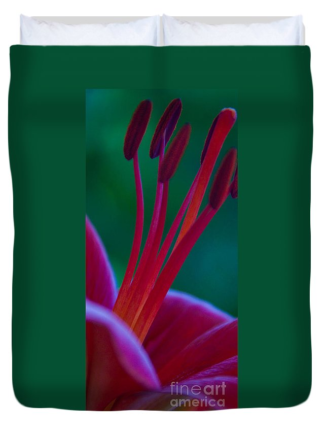Lily Flower Duvet Cover featuring the photograph Pink Lily by Dana Kern