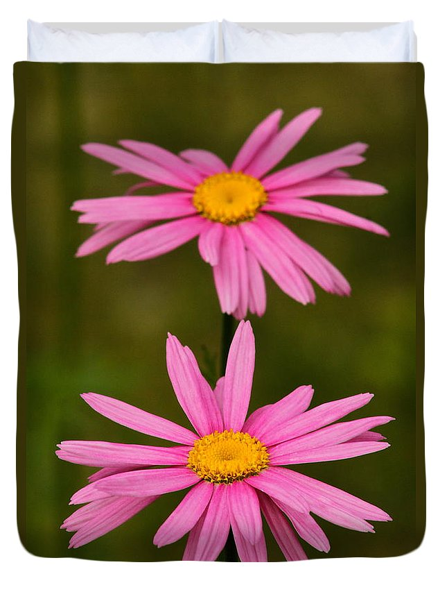 Flower Duvet Cover featuring the photograph Pink Pair by Rick Monyahan