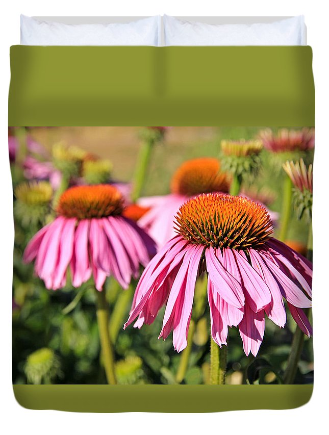 Coneflower Duvet Cover featuring the photograph Pink Pedals by Athena Mckinzie