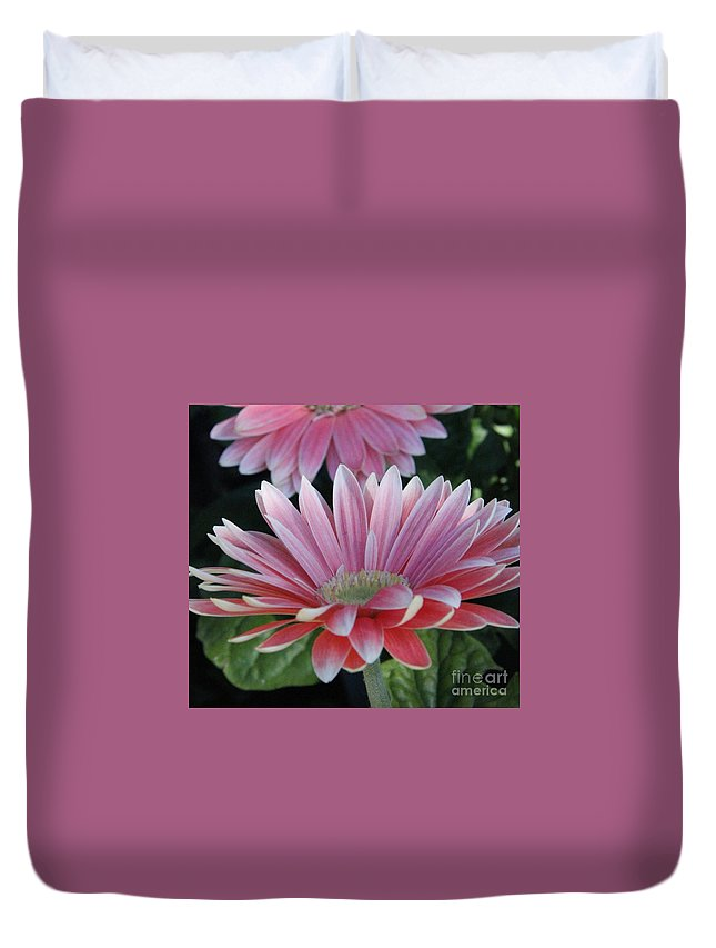 Duvet Cover featuring the photograph Pink Petals by Diane Greco-Lesser