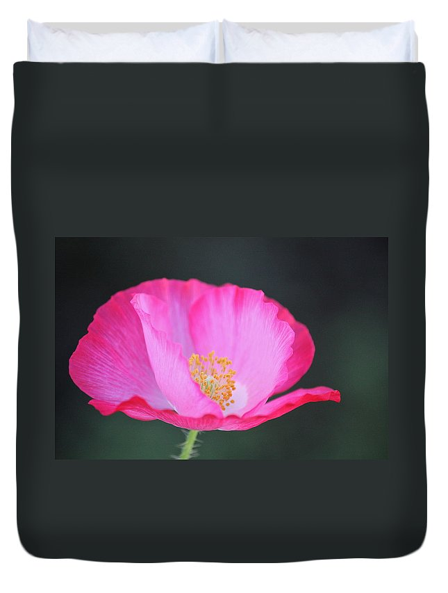 Flowers Duvet Cover featuring the photograph Pink Poppy 3 by Diana Hatcher