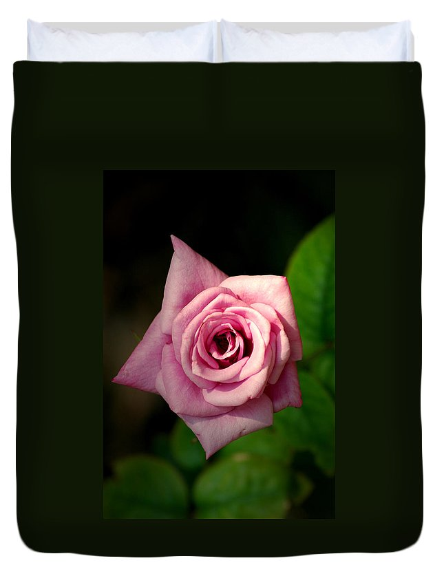 Flower Duvet Cover featuring the photograph Pink Rose by David Weeks