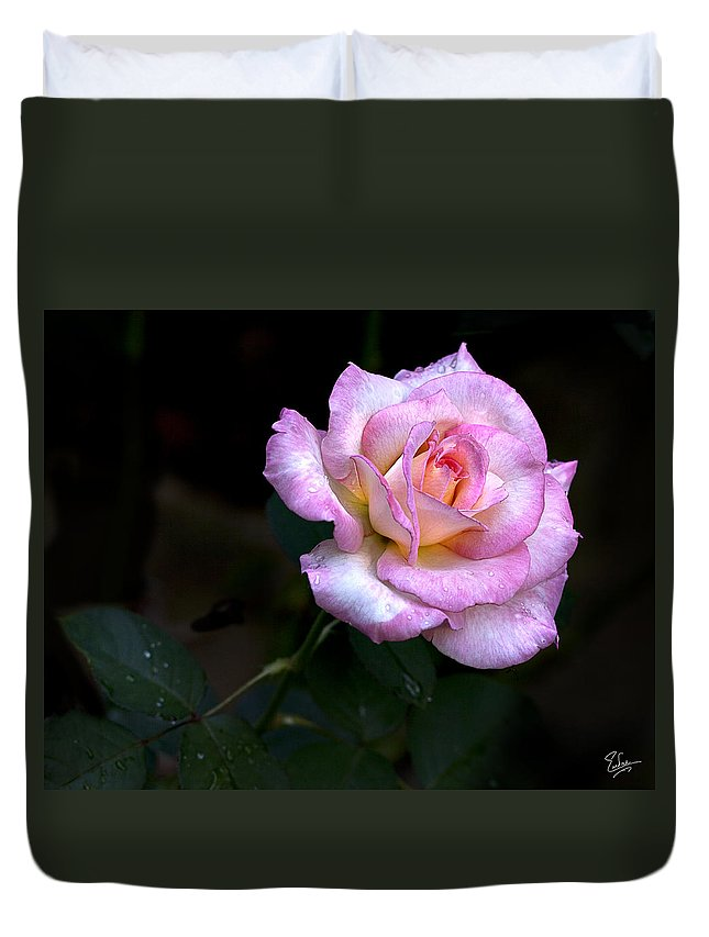 Flower Duvet Cover featuring the photograph Pink Rose by Endre Balogh