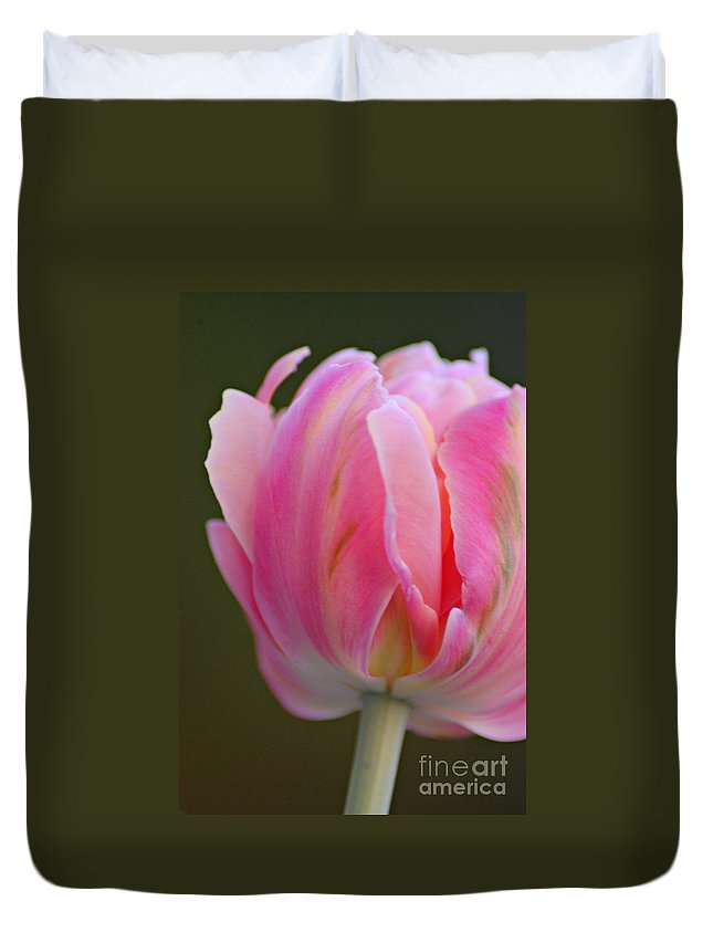 Tulip Duvet Cover featuring the photograph Pink Tulip by Donna Bentley