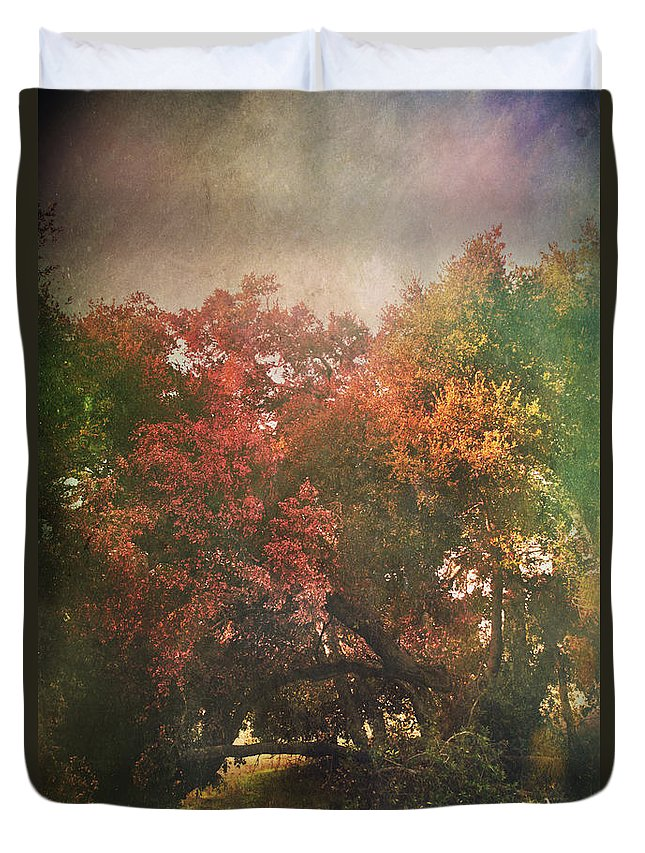 Trees Duvet Cover featuring the photograph Please Let There Be Magic On The Other Side by Laurie Search