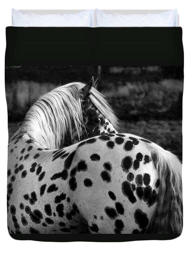 Polka Dotty Duvet Cover featuring the photograph Polka Dotty by Wes and Dotty Weber