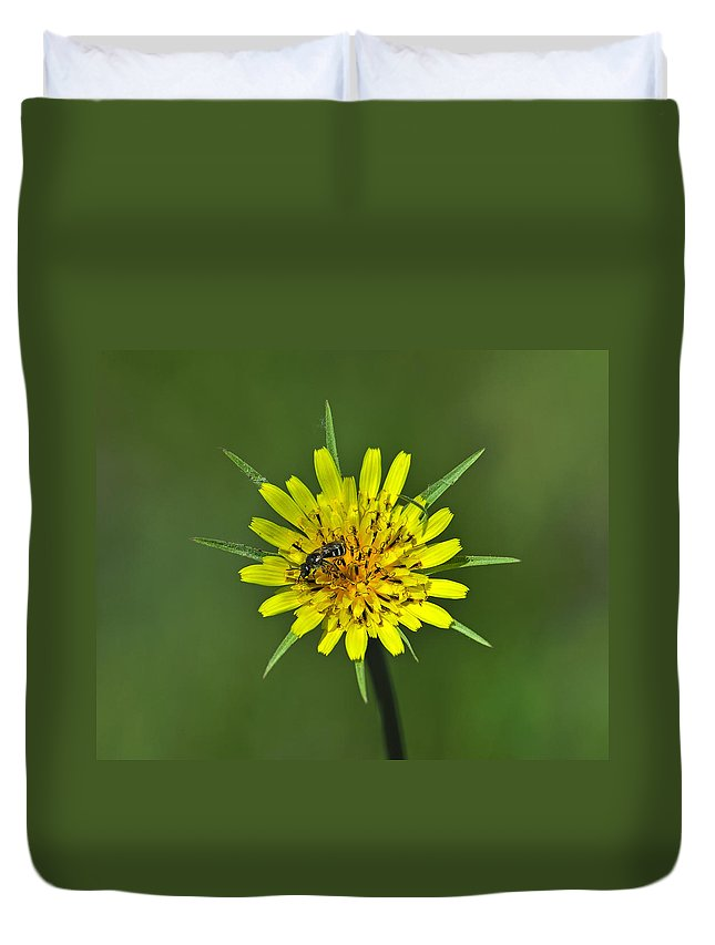 Meadow Salsify Duvet Cover featuring the photograph Pollination by Tony Beck