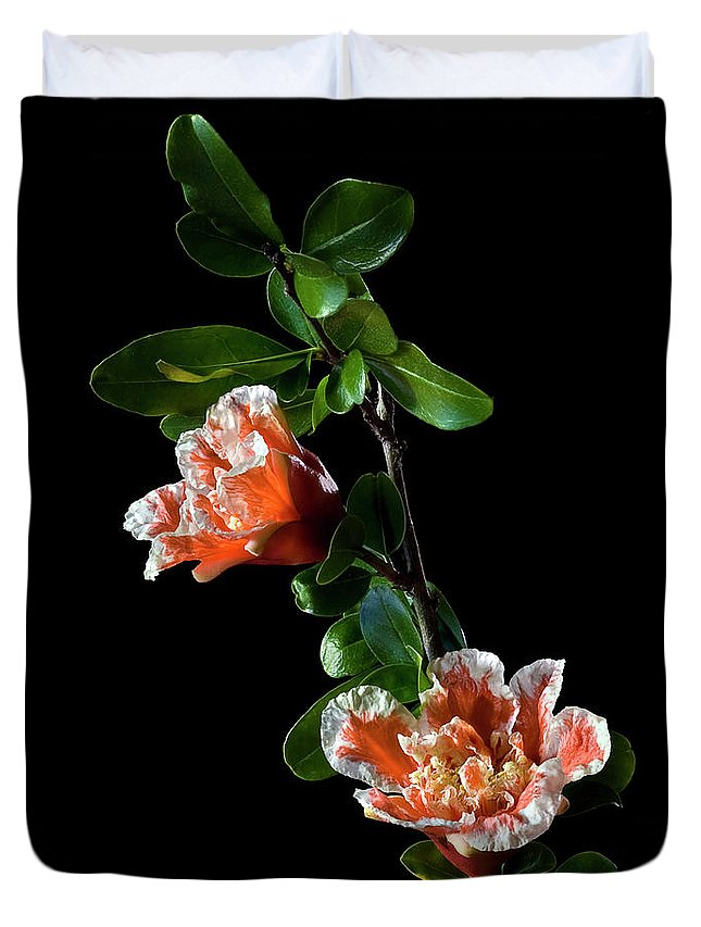 Flower Duvet Cover featuring the photograph Pomegranate by Endre Balogh