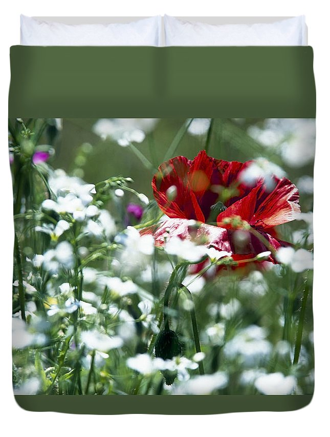 Nature Duvet Cover featuring the photograph Poppy And White Flowers by Patrick Kessler