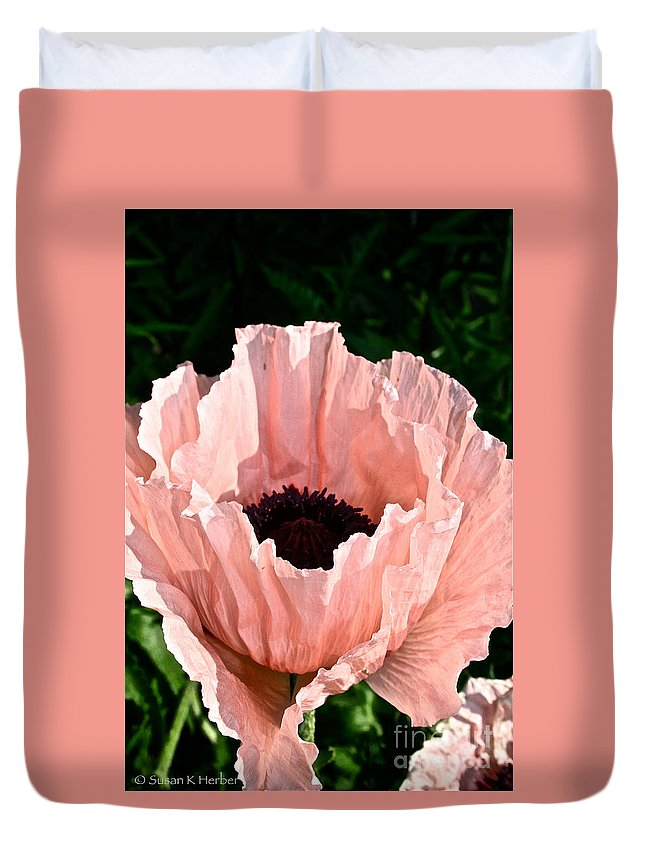 Plant Duvet Cover featuring the photograph Poppy Pink by Susan Herber