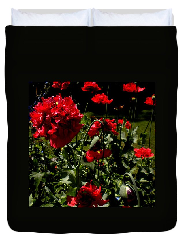 Red Duvet Cover featuring the painting Poppy Pompom by Renate Nadi Wesley