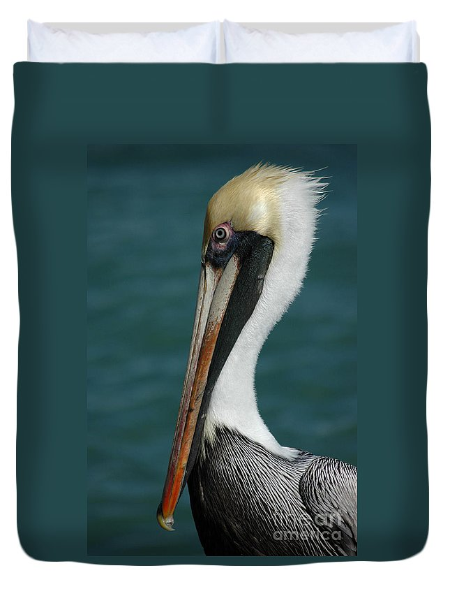 Pelican Duvet Cover featuring the photograph Posing For The Tourists by Vivian Christopher