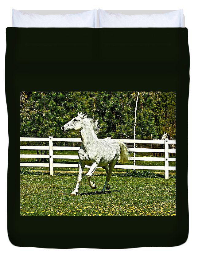 White Horses Duvet Cover featuring the photograph Prancing Around by Steve McKinzie